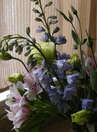 Flowers10.12.09