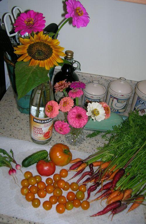 Aug6 Harvest