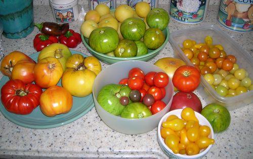 9.3.11 Harvest