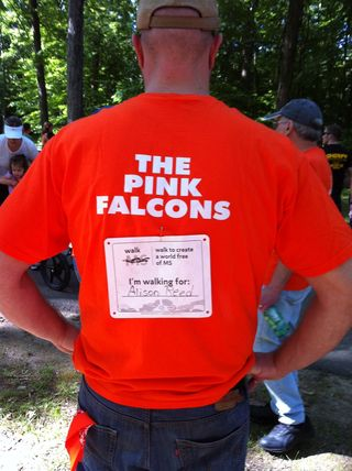 Pink Falcons